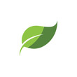 Logos of green Tree leaf ecology nature element