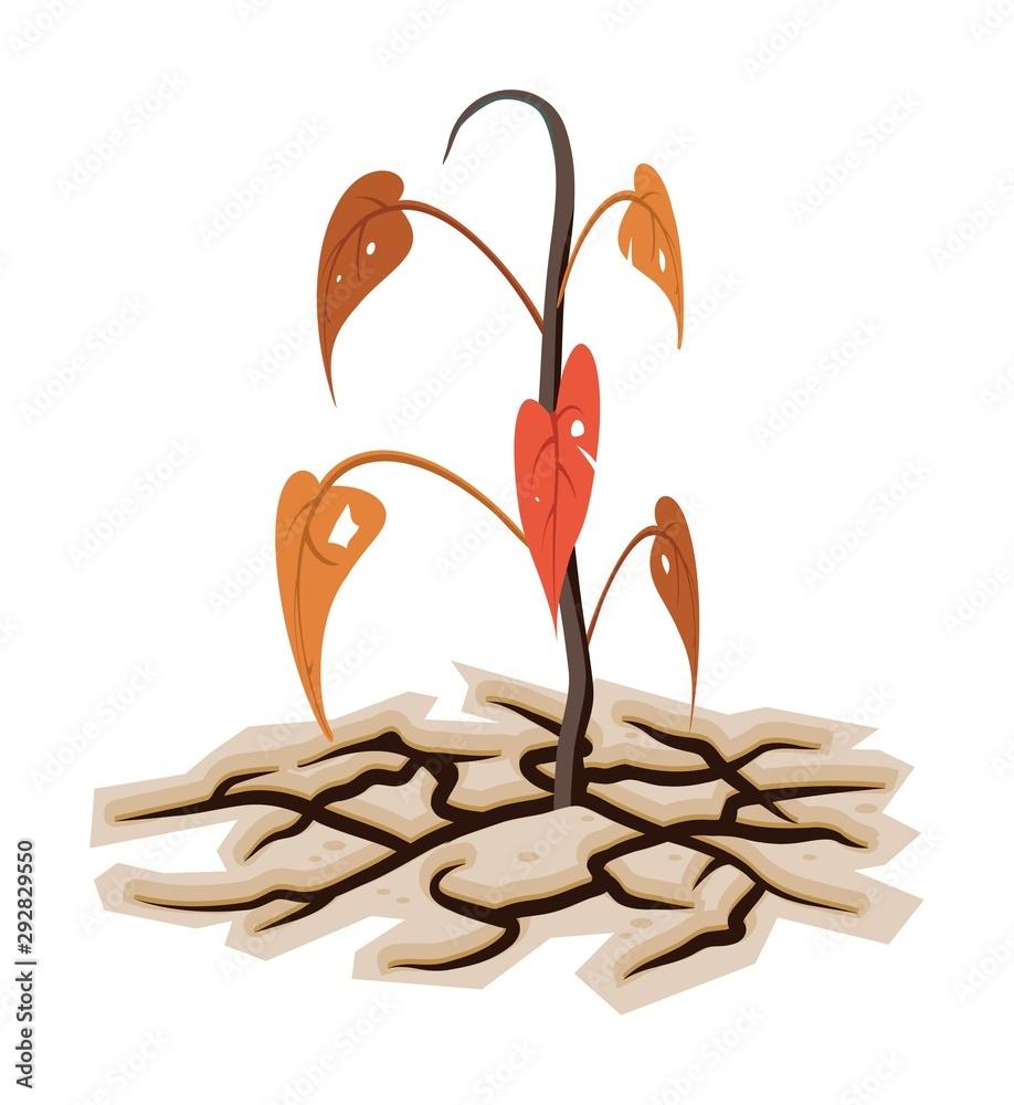 Fototapeta vector dying plant or tree among dry cracked land