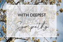 With Deepest Sympathy Card Design With White Box, Script Text And Kōwhai Native New Zealand Tree In The Background