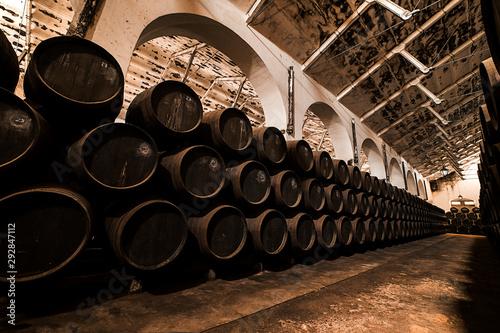 Botas de vino en una bodega española Canvas-taulu