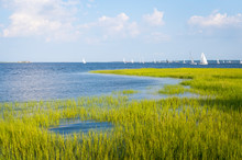 Scenic Summer View Of Sailboats Crossing The Blue Waters Of The Tidal Cooper River Running Into A Harbor Lined With Green Lowcountry Marsh Grasses In Charleston, South Carolina, USA