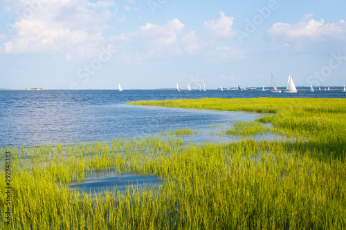 Fotografia Scenic summer view of sailboats crossing the blue waters of the tidal Cooper Riv