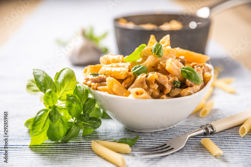 Canvastavla Pasta penne with chicken pieces mushrooms basil and parmesan cheese  Italian foo