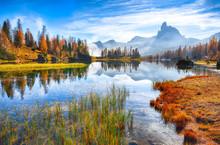 Fantastic Autumn Landscape. Vi...