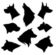 Set Of Different Dog Breeds Si...