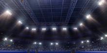 Professional Gymnastic Gym. 3D Illustration