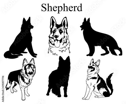 Slika na platnu Shepherd set