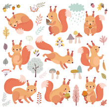 Squirrel Set Hand Drawn Style. Cute Woodland Characters Playing, Sleeping, Relaxing And Having Fun.