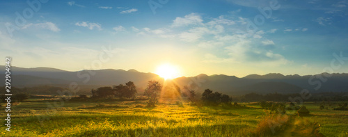 Tuinposter Zonsondergang Sunset over vast blossoming meadow landscape