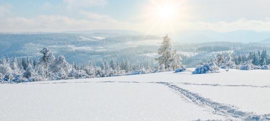 Stunning panorama of snowy landscape in winter in Black Forest - winter wonderland