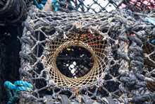 Detail Of A Lobster Pot