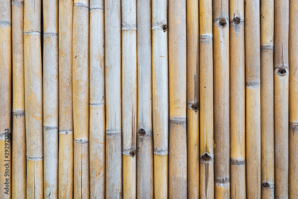 Weathered bamboo fence texture or background