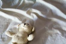 White Teddy Bear In Bed
