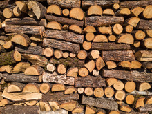 Stacked Chopped Logs Of Firewood With Bark On A Sunny Day.