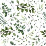 Wzór akwarela gałęzi drzew - 292943107