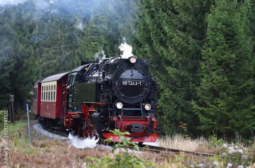 Obraz na płótnie Harzer Schmalspurbahn