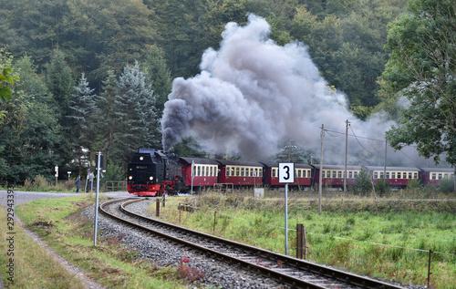 Obraz Harzer Schmalspurbahn  - fototapety do salonu
