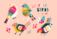 Various Birds With Different F...