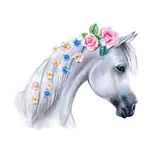 Head of a white horse with pink flowers. cute watercolor clipart. Trendy cartoon horse. Template. Close-up. Clip art. Hand drawn. Template. Hand painted