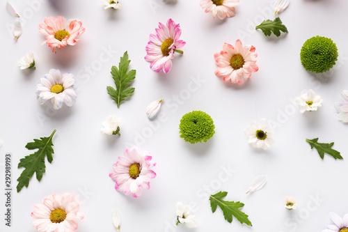Keuken foto achterwand Bloemen Beautiful composition with flowers on white background