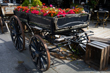 Old Cart With Flowers,  Bornholm, Dueodde