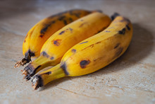 Plantain Fruit Top Kitchen Counter Ripe Three Organic