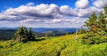 Scenic Mountain Landscape, Blue Sky, White Clouds, Spruce Tress, Old Dry Trees. Jeseniky Mountains.   .
