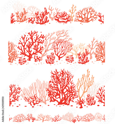Fototapeta Set of Corals border seamless patterns