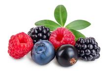 Mix Of Blackberry Blueberry Ra...