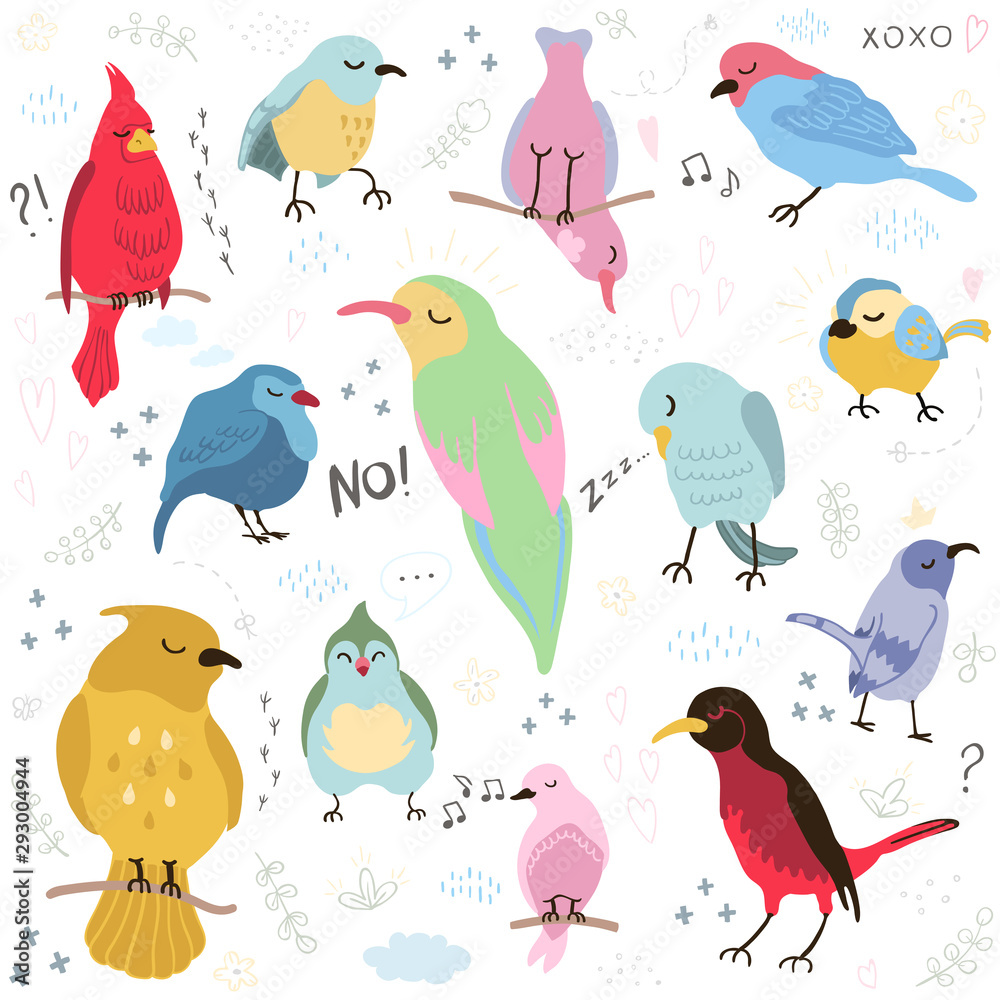 Fototapety, obrazy: Vector colorful set with illustrations of cute birds isolated on white background. Can be used as elemets for your design for greeting cards, nursery, poster, card, birthday party, packaging paper