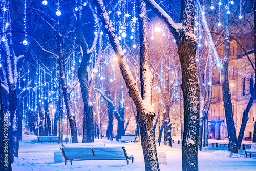 Bleu fonce Russia. Winter St. Petersburg. Christmas illumination in a night park. Park benches. Winter park. Christmas cannulas in Saint Petersburg. Travels to Petersburg. Vacation in Russia. Garlands on trees