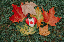 Heart Shape Wooden National Canadian Flag Symbol Lying On Ground In Autumn Fall Red Yellow Orange Maple Leaves. Autumnal Season In Canada Country.