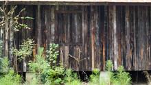 Abandoned Weathered Wood Farm Shed Wall