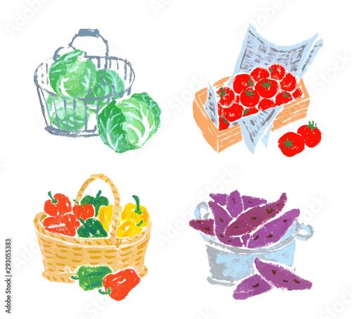 入れ物に入った野菜 いろいろ