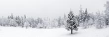 Winter Landscape. Taganay Nati...
