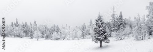 Foto op Plexiglas Wit Winter landscape. Taganay national Park, Chelyabinsk region, South Ural, Russia