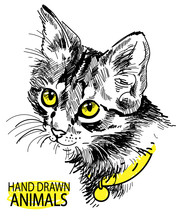 Cat Head Freehand Drawing In V...