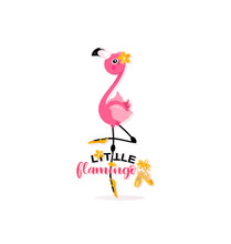 Little Flamingo And Pointe Sho...
