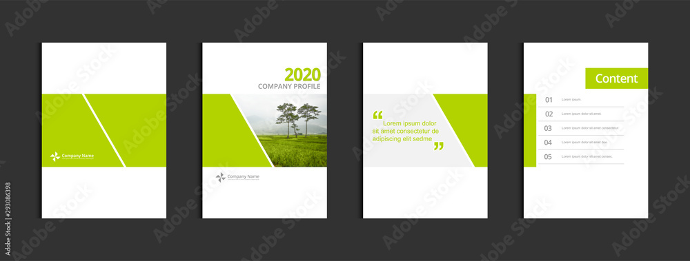 Fototapeta Business cover design template vector. Template A4 for annual report catalog magazine flyer booklet brochure. Sample image with Gradient Mesh.