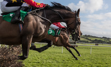 Close-up On Race Horses And Jockeys Jumping Over A Hurdle