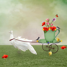 Surreal Scenery With A White Peacock Dragging A Carriage In The Shape Of A Cup Full Of Flowers