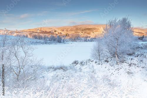 Foto auf AluDibond Himmelblau Inverness, Boblainy Forset tranquil, pink winter scene in the Scottish highlands