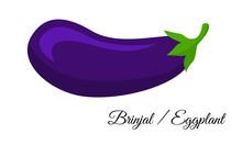 Brinjal, Eggplant. Fresh And Organic Purple Brinjal / Eggplant / Baigan / Aubergines Vector Vegetable Illustration Isolated On White Background.