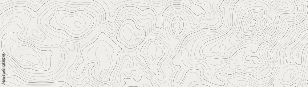 Fototapeta topographic line contour map background, geographic grid map