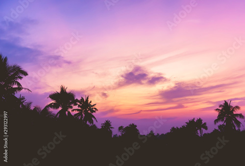 Foto auf Leinwand Rosa hell Silhouette coconut trees on the beautiful sunset sky