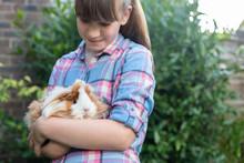 Girl Holding Pet Guinea Pig Ou...