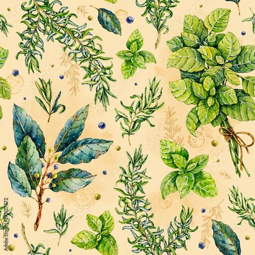 Fotografía Watercolor rosemary, basil, bay leaf