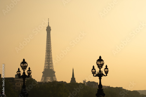 Static shot of Alexandre III bridge during sunset in Paris Canvas Print