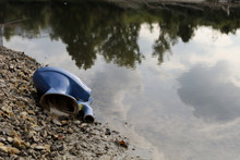 Dump Thrown Into The River. Toilet Bowl Lying Down On River Shore. Ecological Problems