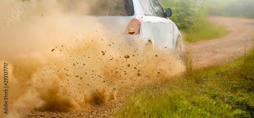 Gravel splashing from rally car drift on dirt track Wallpaper Mural